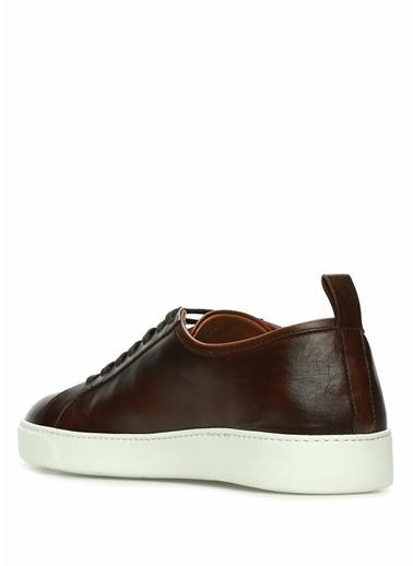 Barrett Sneakers Taba